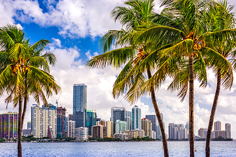 A stock photo of a cityscape in Miami, Florida.