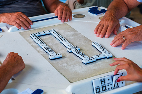 An up close photo of a game of dominos.