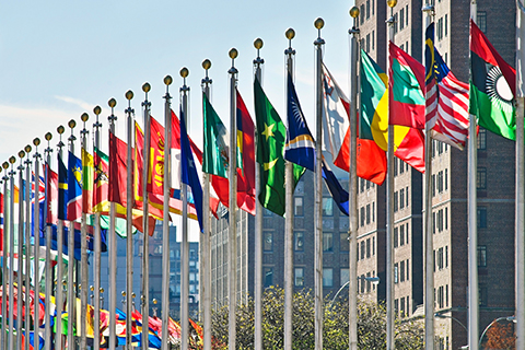 A stock photo of the flags staffed outside of the United Nations building in New York, New York.